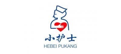 Hebei Pukang Medical Instruments Co Ltd