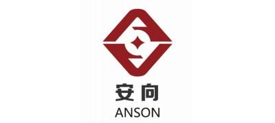 Shanghai Anson International Trade Co Ltd